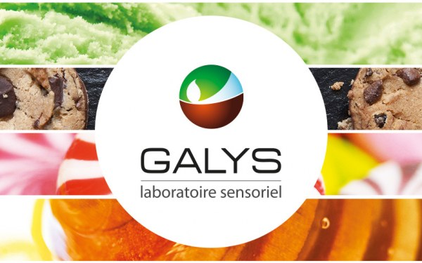 galys-logo-communication-institutionnelle
