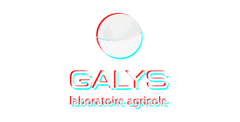 agence-de-communication-a-toulouse-creation-client-logo-galys-color