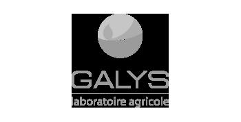 Agence de communication à Toulouse : Client Galys