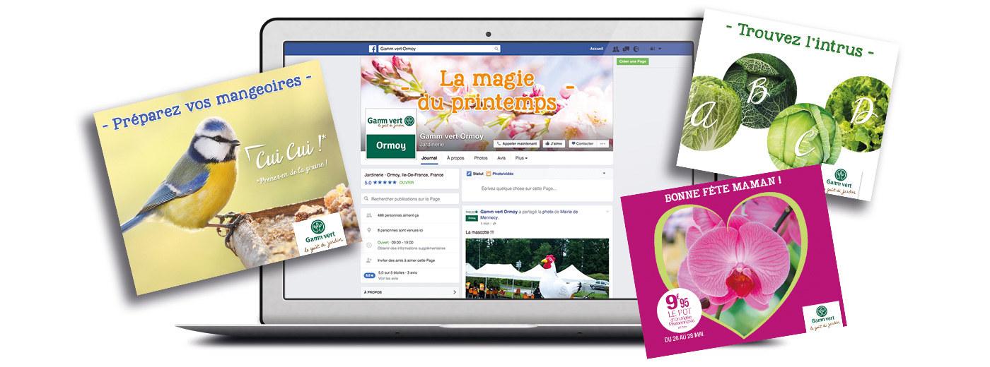 gamm-vert-multi-facebook